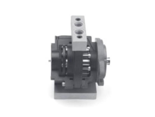 Axial Vane Motor